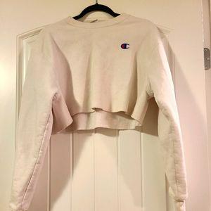 Champion crop sweater